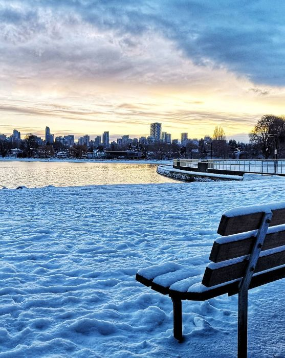 挺住! 温哥华25cm暴雪今晚最后一击! 可爱的加拿大人 已彻底进入撒欢模式