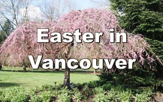 【攻略】雨虽然会下,蛋还是得找!复活节长周末好去处汇总